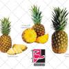 دانلود مجموعه تصاویر دوربری شده PNG آناناس