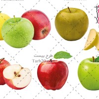تصاویر و عکس های دوربری شده سیب