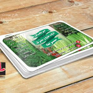 طرح لایه باز کارت ویزیت سبزیجات آماده طبخ