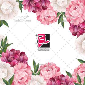 طرح وکتور رنگی قاب و حاشیه گل های رز صورتی