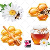 طرح وکتور عسل، زنبور و کندو