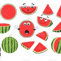 وکتور انواع مختلف هندوانه یلدا و شب چله