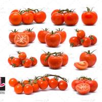 مجموعه عکس های با کیفیت گوجه فرنگی