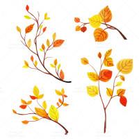 طرح وکتور شاخه های درخت پاییزی