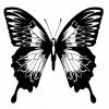 طرح وکتور جدید و کامل پروانه