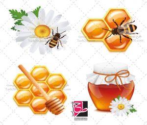 طرح وکتور عسل
