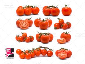 عکس گوجه فرنگی