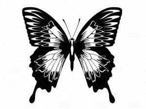 وکتور پروانه